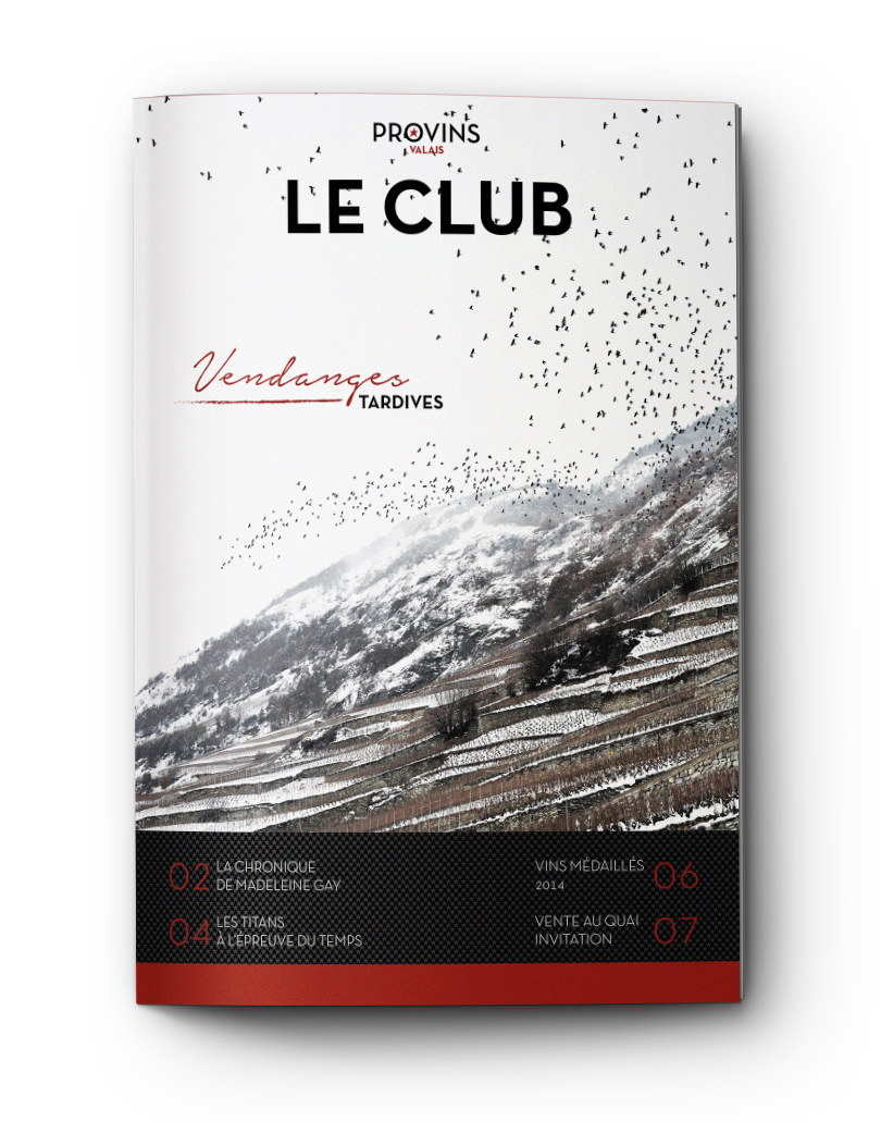 provvins valais le club branding proposal mvdw